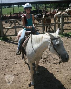 Anokijig Ranch Horse program